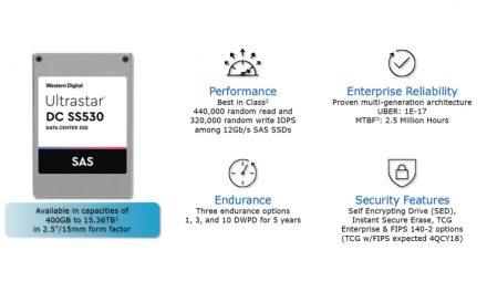 Western Digital Ultrastar DC SS530 SSD SAS de doble puerto