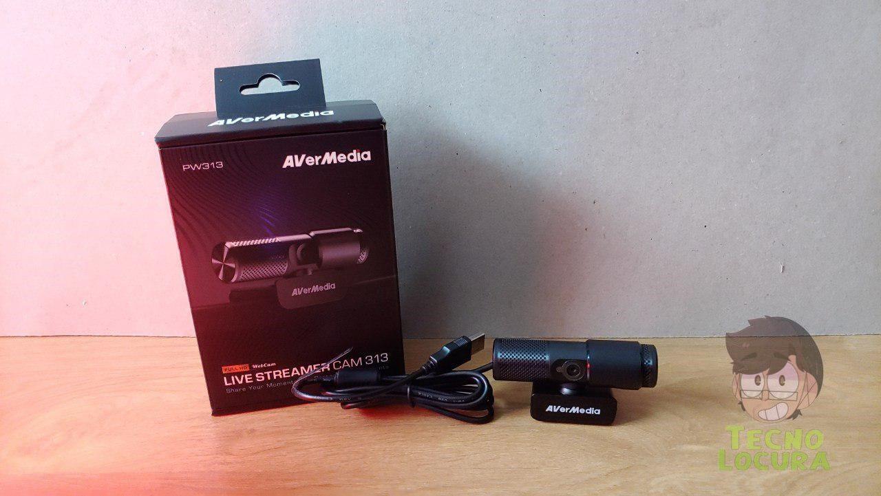 Live Streamer CAM 313